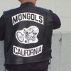 Mongolpatch